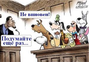 Как стать присяжным заседателем в России