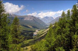 Дальневосточный гектар: как получить землю бесплатно