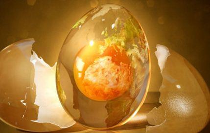Донорство яйцеклетки: как пройти и каковы последствия для организма