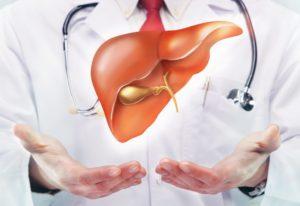 Опасна ли трансплантация печени для донора?