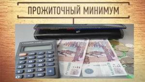 prozhitochnyj-minimum-v-moskovskoj-oblasti