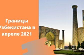 Границы Узбекистана и России открылись: кому разрешено лететь