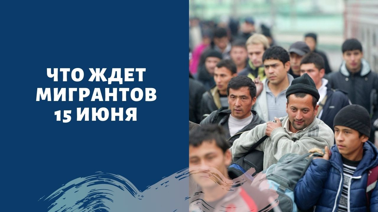 Что делать мигрантам после 15 июня