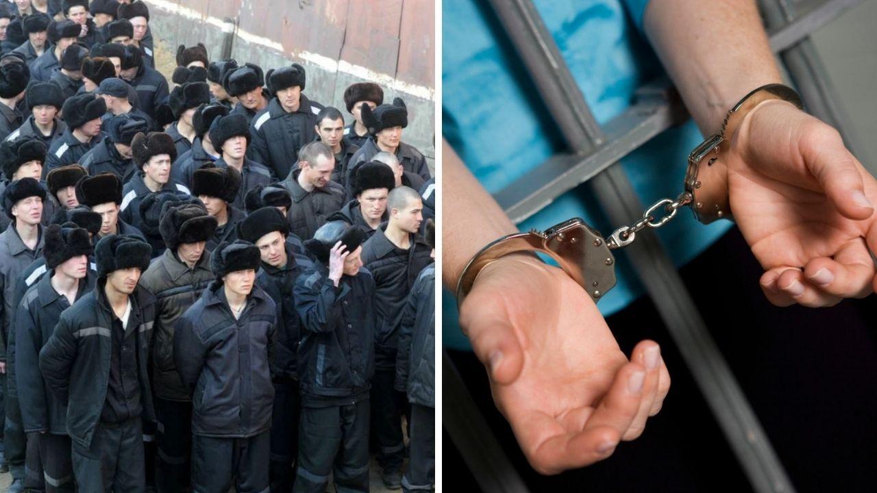 Амнистия по уголовным делам - последние новости